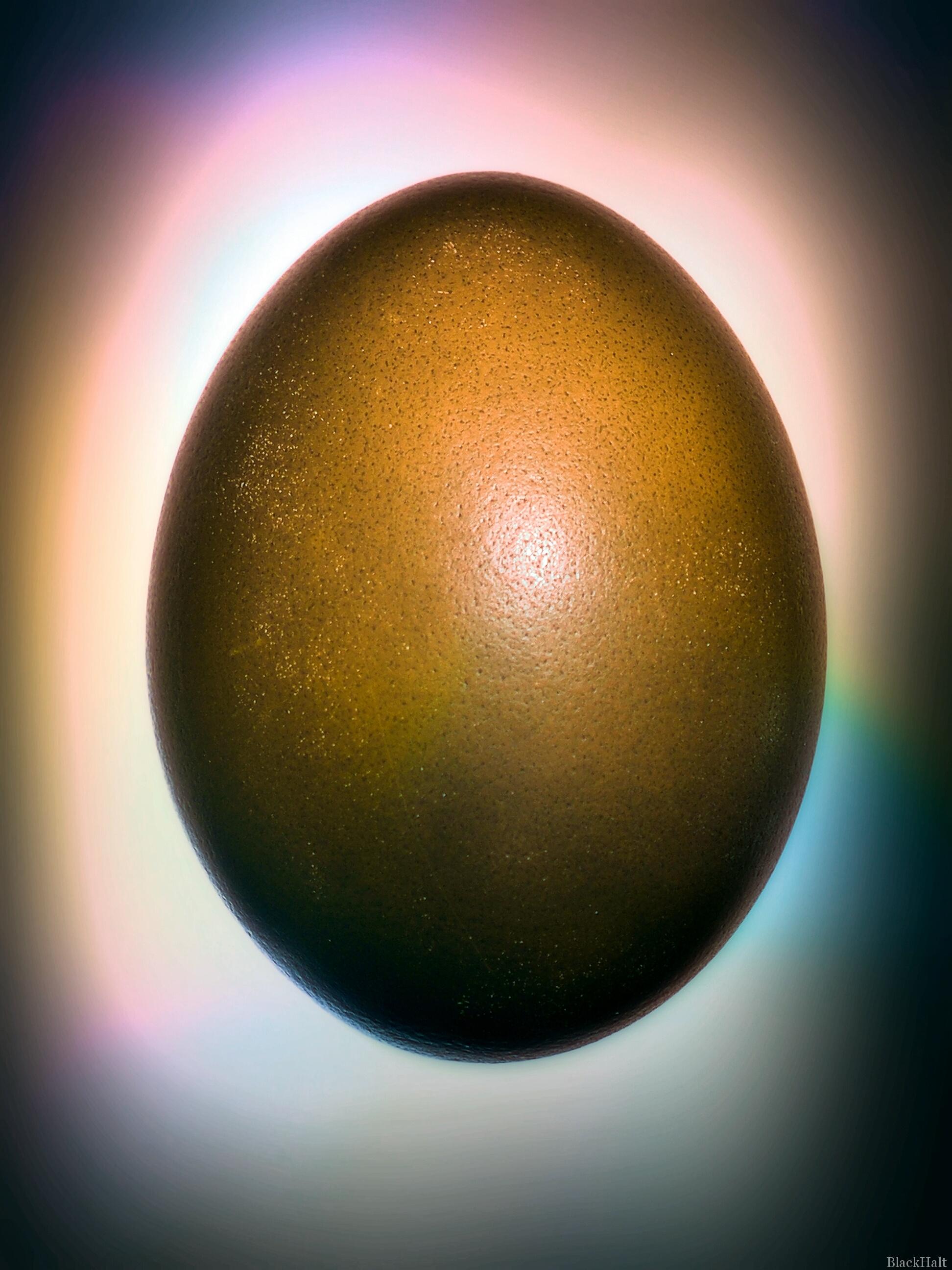 Lieldienu olas Nr.105