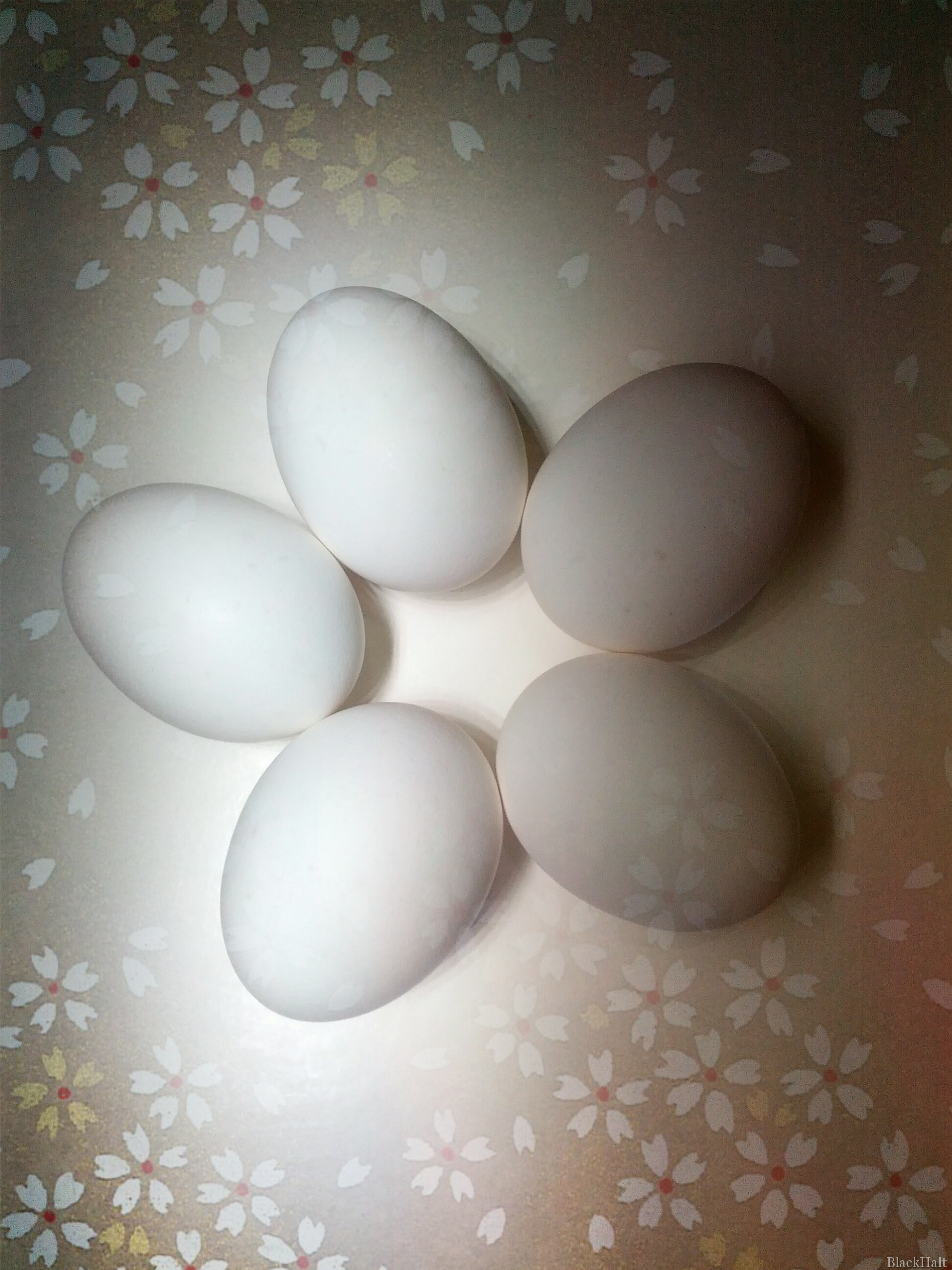 Lieldienu olas Nr.14