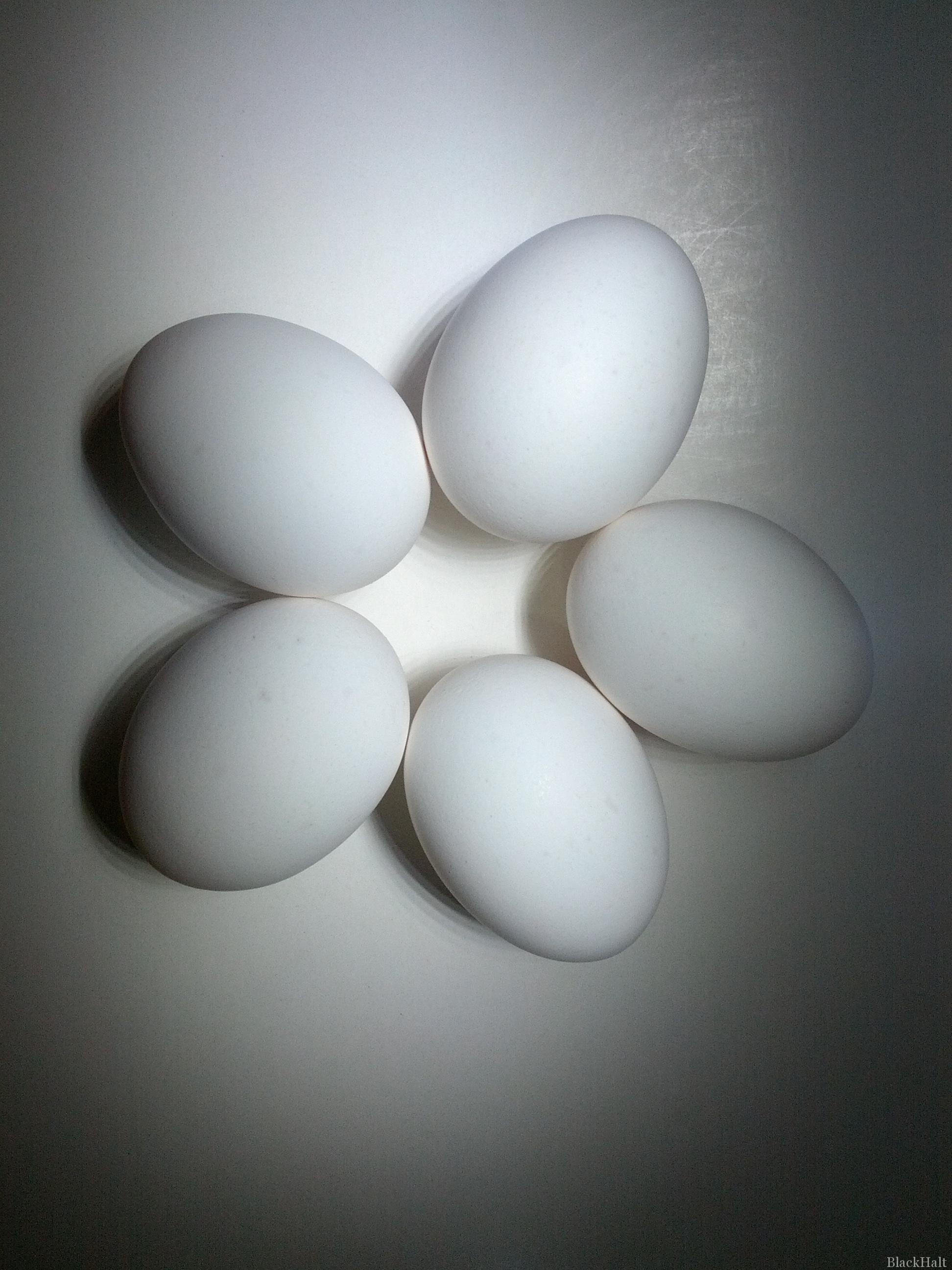 Lieldienu olas Nr.145