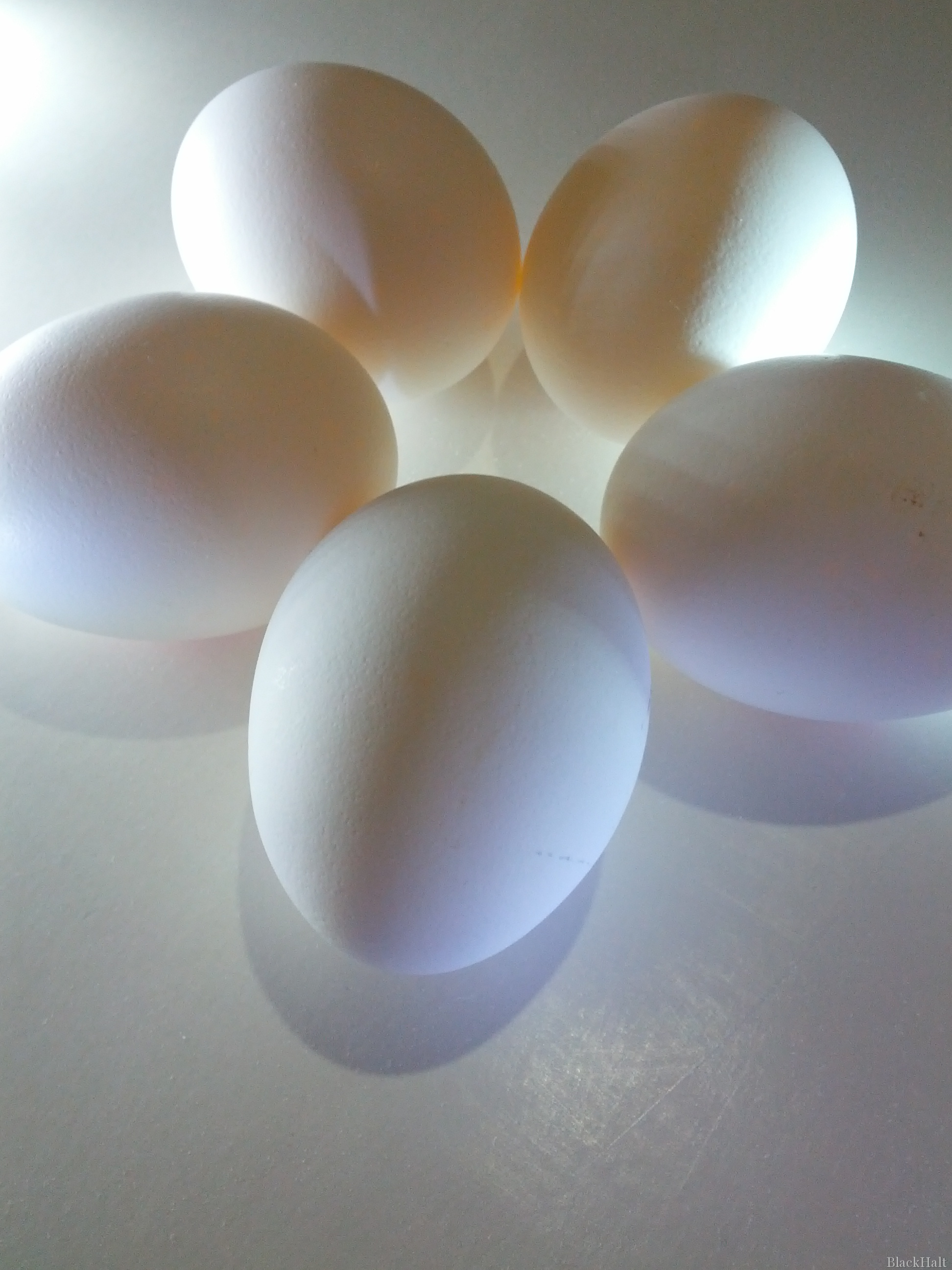 Lieldienu olas Nr.147