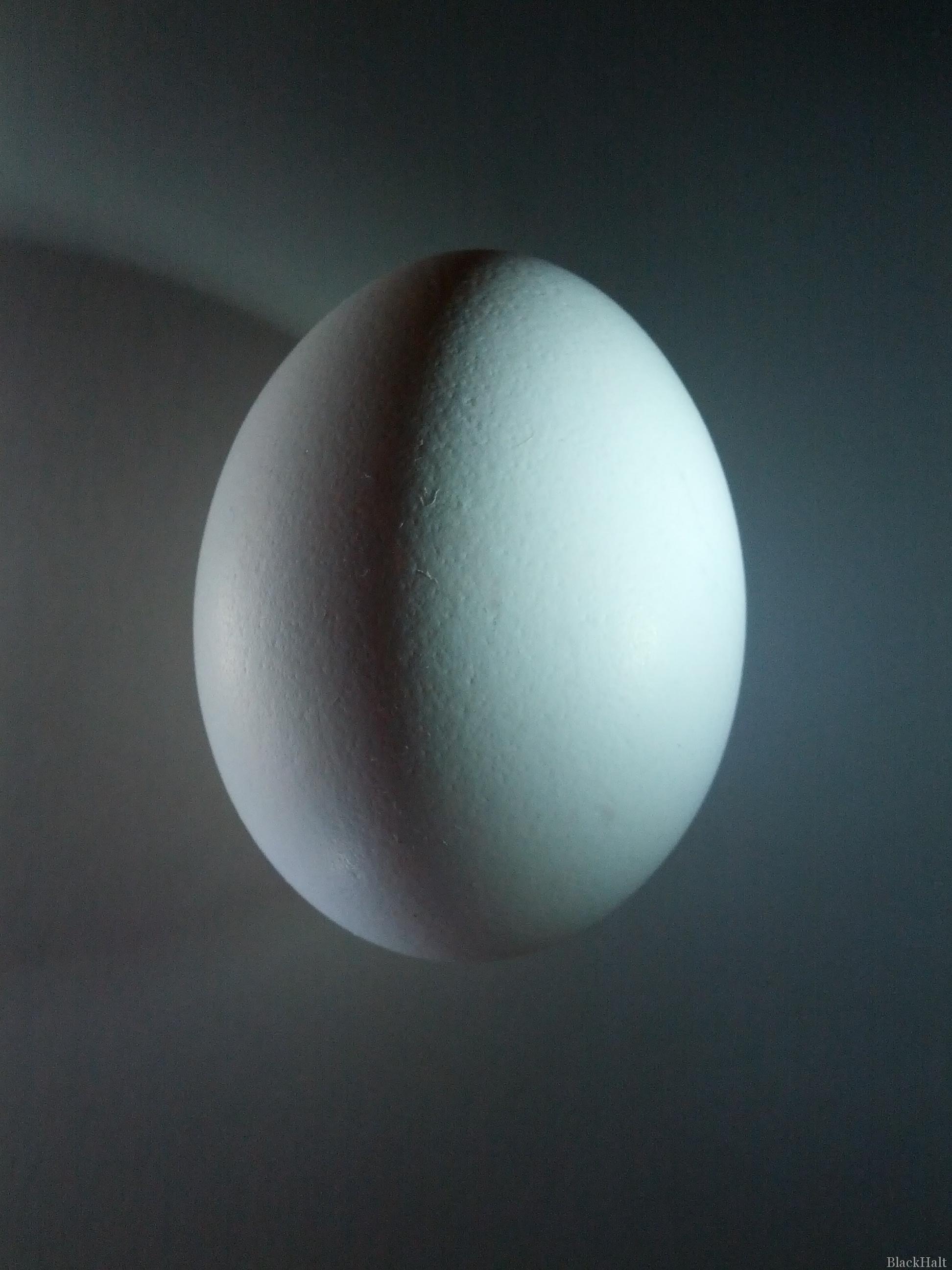 Lieldienu olas Nr.149