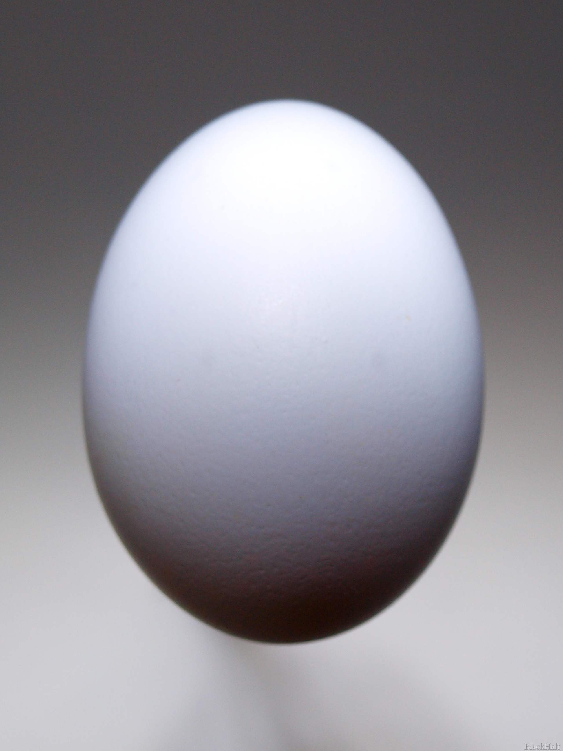 Lieldienu olas Nr.153