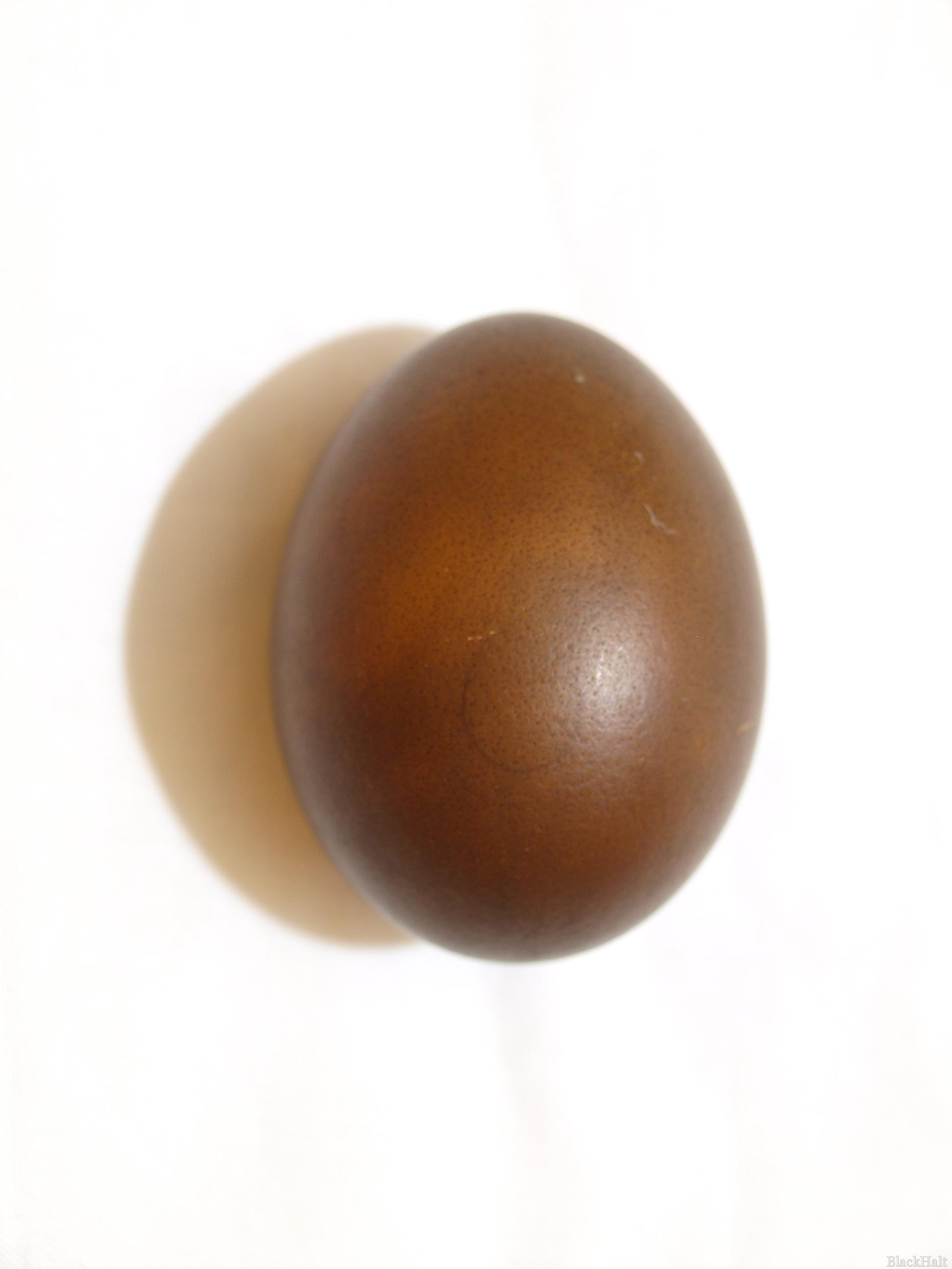 Lieldienu olas Nr.169
