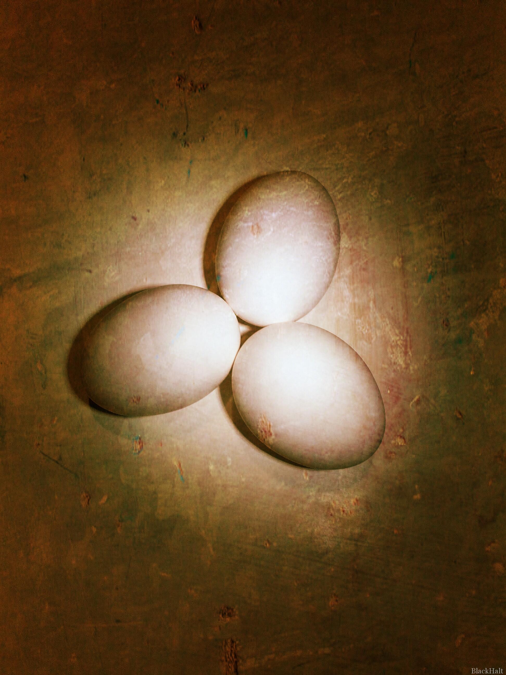 Lieldienu olas Nr.4